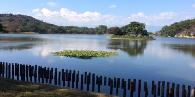 南湖公園湖畔